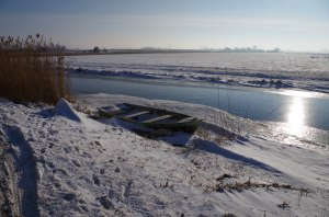 winter2013 (1 of 6)